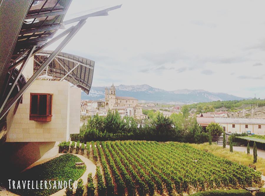 Vistas de Elciego desde el Marqués de Riscal by TravellersandCo copia.jpg