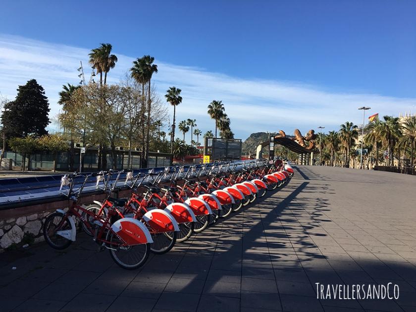 Paseo de Colon-Barcelona by TravellersandCo.jpg
